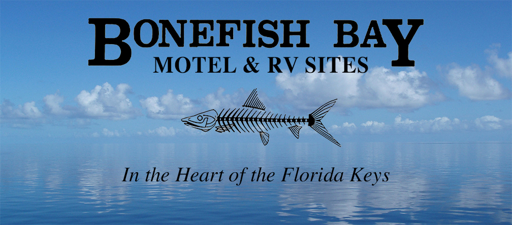 Bonefish Bay Motel and RV Resort Marathon Florida 33050