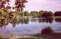 Benton Koa Campground Benton IL62812